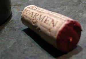 Carmen Nativa Cabernet Sauvignon 2005