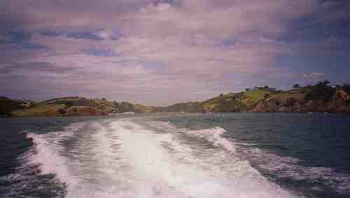 The ferry to Waiheke